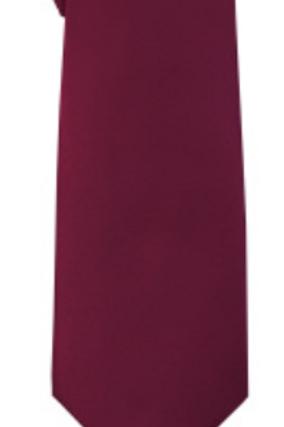 Solid Tie & Hanky - PLUM