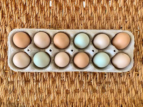 One Dozen Rainbow Eggs