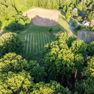 Wildberry Farm