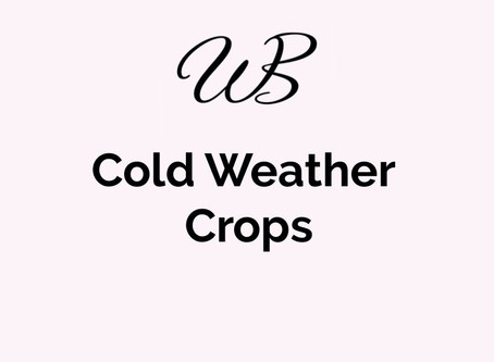Cold Weather Crops