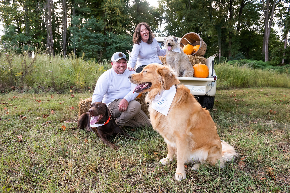 Man and woman with three dogs sitting on and around a vintage pick-up truck full of hay bales pumpkins and gourds