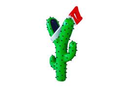 Cactus Saw