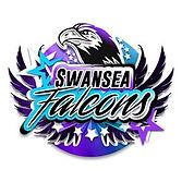 CARDIFF- Swansea.jpg