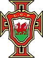 Luso Cymru.png