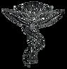Chiropractor Symbol.png