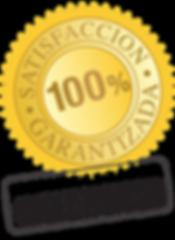 icon-satisfaccion-total-256x350-219x300.