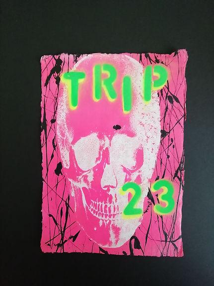 TRIP 23