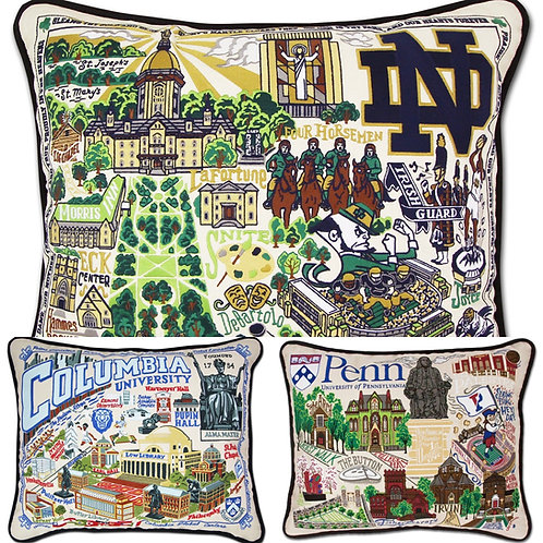 CATSTUDIO COLLEGIATE PILLOWS - SPECIAL