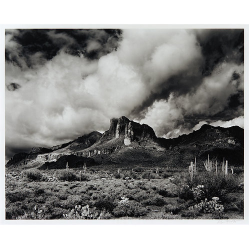 Jody Forster Black White Photograph