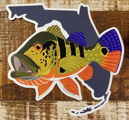 Peacock Bass on Florida