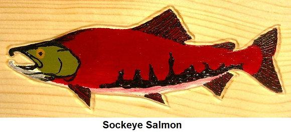 Painted Sockeye Salmon