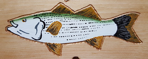 Hand-Painted Striper