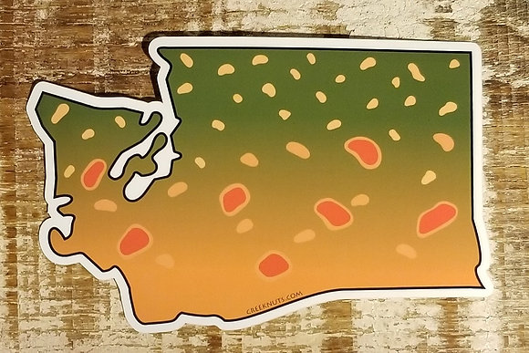 Bull Trout - Washington