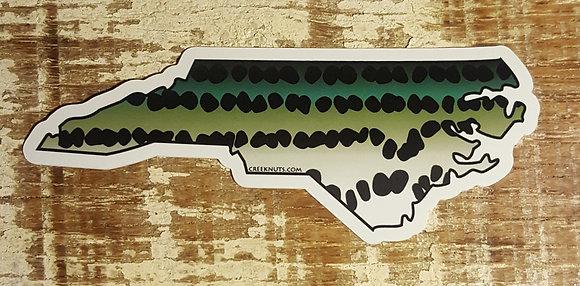 Striper - North Carolina