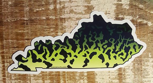 Black Crappie - Kentucky