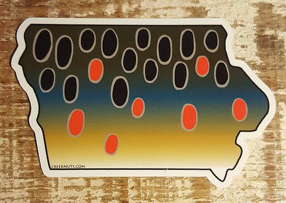 Brown Trout - Iowa