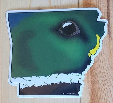 Mallard Duck - Arkansas