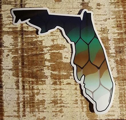 Tarpon - Florida