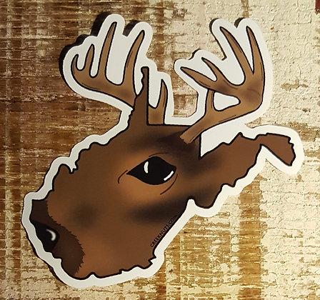 Whitetail Buck - West Virginia