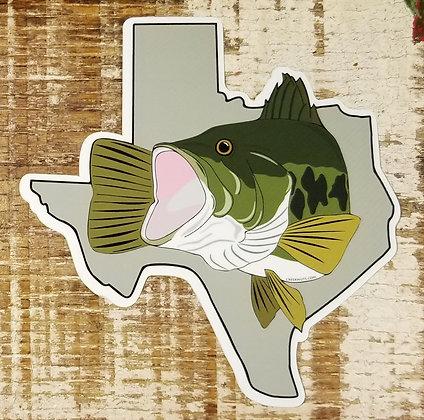 Largemouth Bass on Texas
