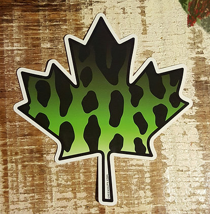 Canadian Maple Leaf Musky