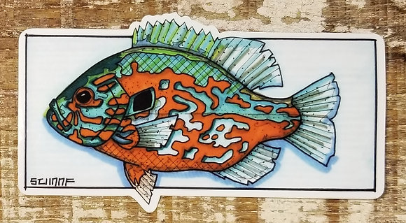 Pumkinseed Sunfish Designed by Josh Schaaf