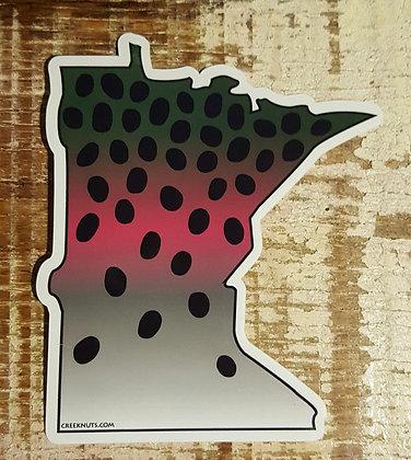 Rainbow Trout - Minnesota