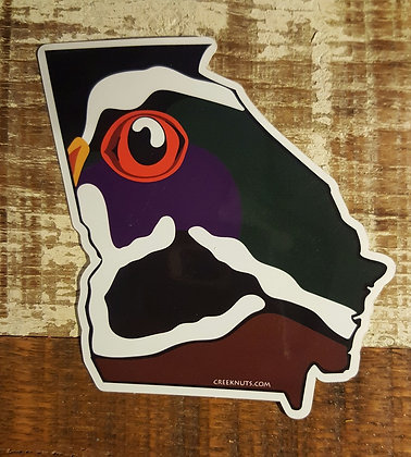 Wood Duck - Georgia