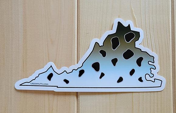 Speckled Sea Trout - VA