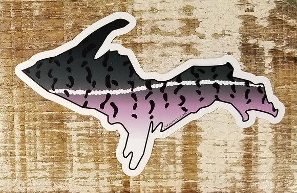 Coho Salmon - UP