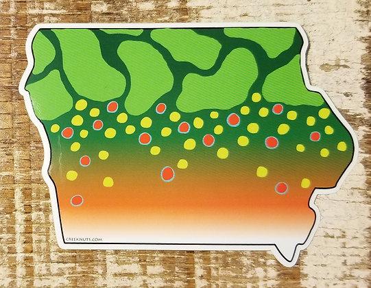 Brook Trout - Iowa