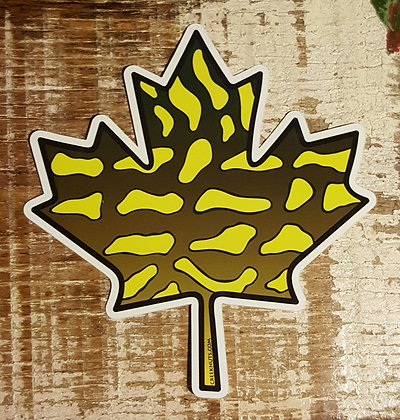 Canadian Maple Leaf - Northern Pike