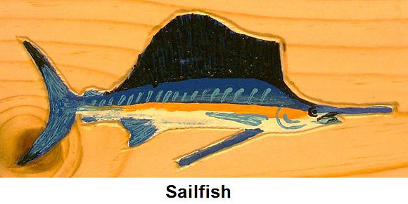 Painted Sailfish
