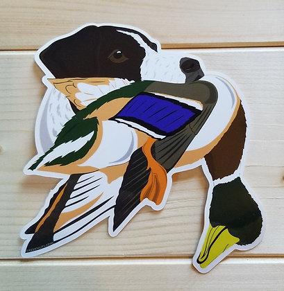 German Shorthaired Pointer w/Mallard Sticker