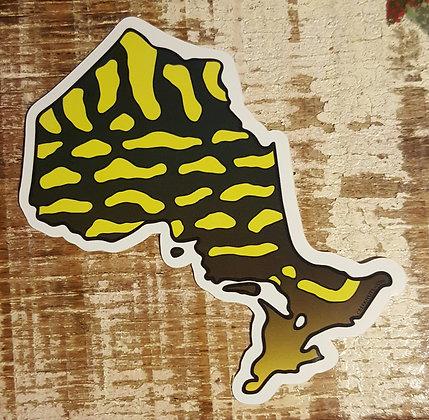 Northern Pike - Ontario