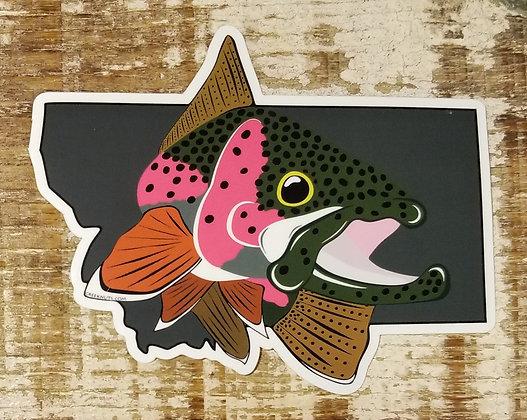 Rainbow Trout on Montana