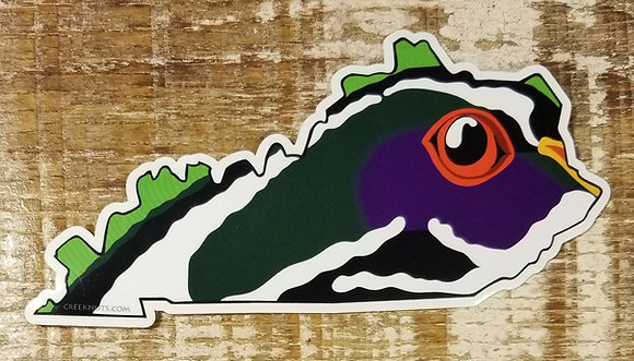 Wood Duck - Kentucky