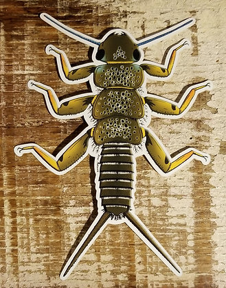 Brown Trout Stonefly by Evan Makuvek