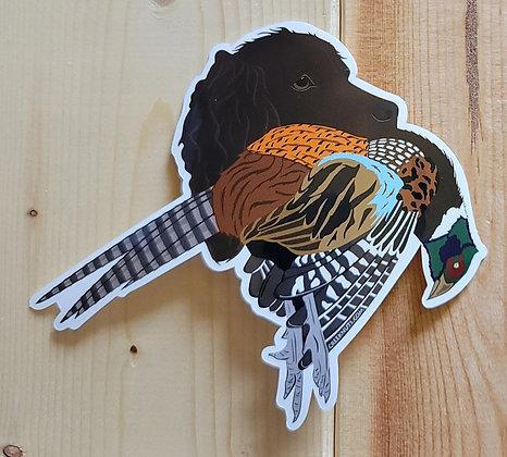 Boykin Spaniel w/Pheasant Sticker
