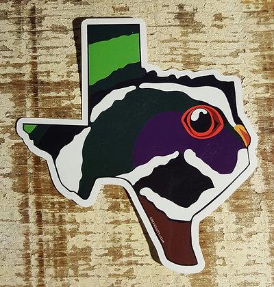 Wood Duck - Texas