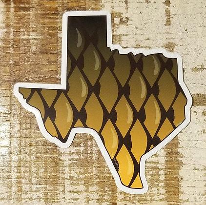 Carp - Texas