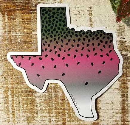 Rainbow Trout - Texas