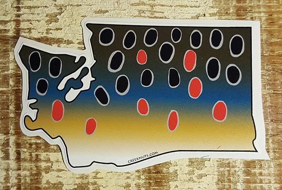 Brown Trout - Washington