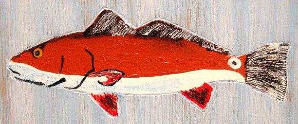 Painted Redfish
