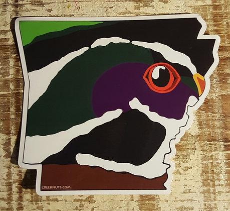 Wood Duck- Arkansas
