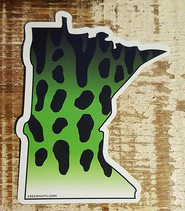 Minnesota Musky Skin