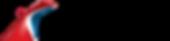 car_logo_icon_wm_r_blk_rgb (2).png