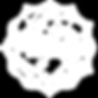IIIN-WebLogo-White_edited.png