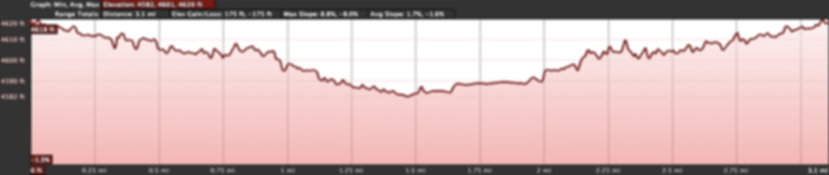 Turkey Trot Course Elevation Profile.png