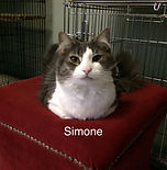 Simone.jpg